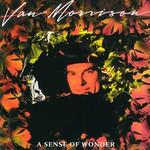 Van Morrison, A Sense of Wonder mp3