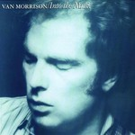 Van Morrison, Into the Music mp3