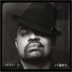 Heavy D, Vibes