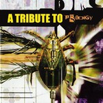 Various Artists, A Tribute to The Prodigy mp3