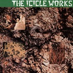 The Icicle Works, The Icicle Works