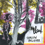 The Used, Shallow Believer