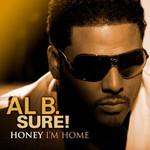 Al B. Sure!, Honey I'm Home