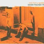 Xaver Fischer Trio, Visit From A Goddess