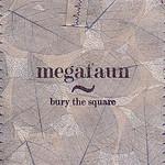 Megafaun, Bury the Square