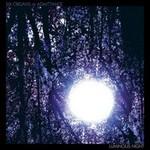 Six Organs of Admittance, Luminous Night