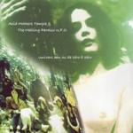 Acid Mothers Temple & The Melting Paraiso U.F.O., Univers Zen ou De Zero a Zero
