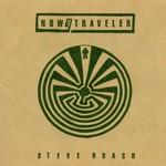 Steve Roach, Now / Traveler mp3