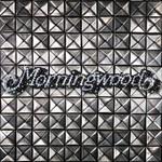 Morningwood, Diamonds & Studs