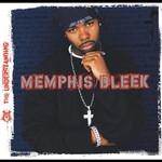 Memphis Bleek, The Understanding