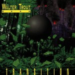 Walter Trout Band, Transition