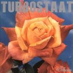 Turbostaat, Schwan