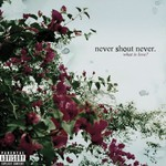 Never Shout Never, What Is Love