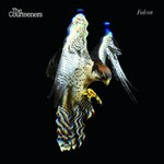 The Courteeners, Falcon
