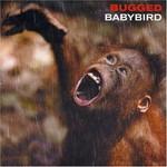 Babybird, Bugged