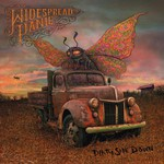 Widespread Panic, Dirty Side Down