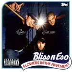Bliss n Eso, Flowers in the Pavement