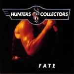 Hunters & Collectors, Fate
