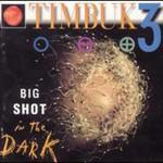 Timbuk 3, Big Shot in the Dark