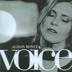 Alison Moyet, Voice