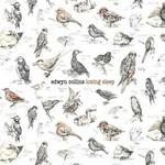 Edwyn Collins, Losing Sleep