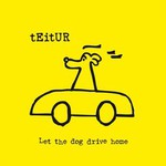 Teitur, Let the Dog Drive Home