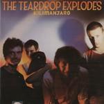 The Teardrop Explodes, Kilimanjaro