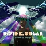 David E. Sugar, Memory Store