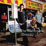 The Wallflowers, Breach