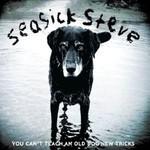 Seasick Steve, You Can't Teach An Old Dog New Tricks mp3