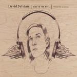 David Sylvian, Died In The Wool (Manafon Variations) mp3