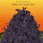 Buckethead, Needle in a Slunk Stack