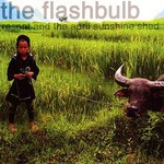 The Flashbulb, Resent and the April Sunshine Shed mp3