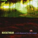 Buckethead, A Real Diamond in the Rough