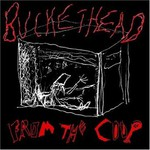 Buckethead, From the Coop