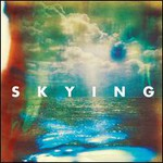 The Horrors, Skying