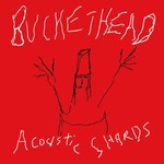 Buckethead, Acoustic Shards
