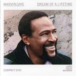 Marvin Gaye, Dream of a Lifetime mp3