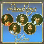 The Beach Boys, 15 Big Ones mp3