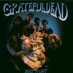 Grateful Dead, Built to Last mp3