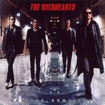 The Wildhearts, Endless, Nameless mp3