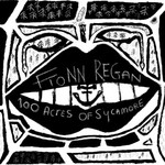 Fionn Regan, 100 Acres Of Sycamore
