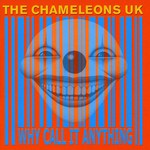 The Chameleons, Why Call It Anything?