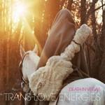 Death in Vegas, Trans-Love Energies mp3