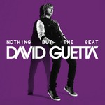 David Guetta, Nothing But The Beat (Collectors Edition) mp3