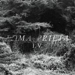 Loma Prieta, I.V.