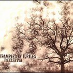 Trampled by Turtles, Duluth