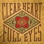 Craig Finn, Clear Heart Full Eyes