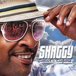 Shaggy, Summer In Kingston