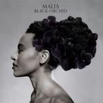 Malia, Black Orchid